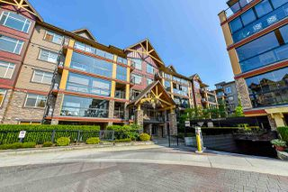 Photo 1: 487 8288 207A STREET in Langley: Willoughby Heights Condo for sale : MLS®# R2374146