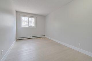 Photo 19: 116 10555 93 Street in Edmonton: Zone 13 Condo for sale : MLS®# E4200589