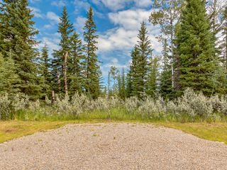 Photo 11: 16-34364 RANGE ROAD 42 in : Rural Mountain View County Land for sale (Mountain View)
