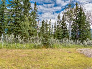 Photo 3: 16-34364 RANGE ROAD 42 in : Rural Mountain View County Land for sale (Mountain View)