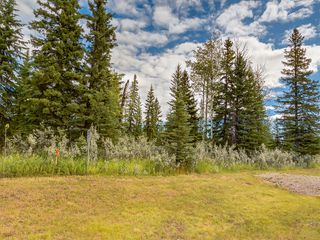 Photo 4: 16-34364 RANGE ROAD 42 in : Rural Mountain View County Land for sale (Mountain View)
