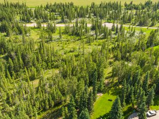 Photo 12: 16-34364 RANGE ROAD 42 in : Rural Mountain View County Land for sale (Mountain View)