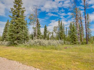 Photo 10: 16-34364 RANGE ROAD 42 in : Rural Mountain View County Land for sale (Mountain View)