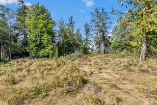 Photo 44: 6912 West Coast Rd in : Sk Whiffin Spit House for sale (Sooke)  : MLS®# 854816