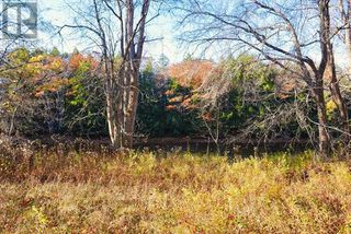 Photo 12: Lot 10 Highway 10 in Cookville: Vacant Land for sale : MLS®# 202022759