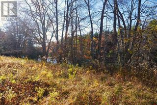Photo 18: Lot 10 Highway 10 in Cookville: Vacant Land for sale : MLS®# 202022759