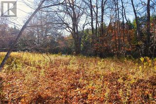Photo 19: Lot 10 Highway 10 in Cookville: Vacant Land for sale : MLS®# 202022759