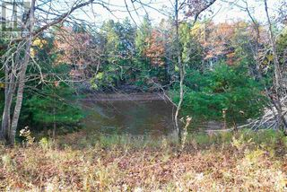 Photo 15: Lot 10 Highway 10 in Cookville: Vacant Land for sale : MLS®# 202022759