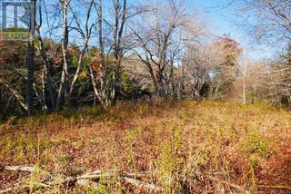 Photo 14: Lot 10 Highway 10 in Cookville: Vacant Land for sale : MLS®# 202022759