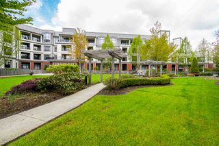 "Photo 11: 225 8880 202 Street in Langley: Walnut Grove Condo for sale in ""The Residences"" : MLS®# R2396369"
