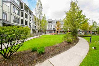"Photo 12: 225 8880 202 Street in Langley: Walnut Grove Condo for sale in ""The Residences"" : MLS®# R2396369"