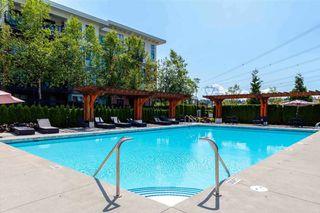 Photo 20: 205 3323 151 Street in Surrey: Morgan Creek Condo for sale (South Surrey White Rock)  : MLS®# R2409291