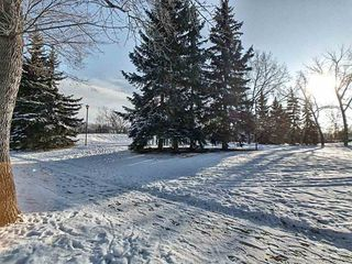 Photo 12: 11916 130 Avenue in Edmonton: Zone 01 House for sale : MLS®# E4182176