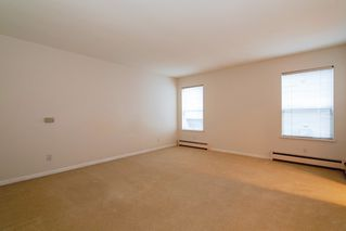 Photo 11: 2788 CYPRESS Street in Vancouver: Kitsilano House 1/2 Duplex for sale (Vancouver West)  : MLS®# R2424951