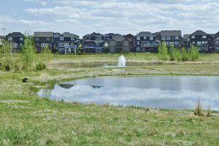 Photo 26: 3240 WINSPEAR Crescent in Edmonton: Zone 53 House for sale : MLS®# E4219712