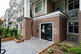"""Photo 3: 516 20686 EASTLEIGH Crescent in Langley: Langley City Condo for sale in """"The Georgia"""" : MLS®# R2526062"""