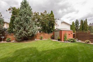 Photo 30: 9136 177 Street in Edmonton: Zone 20 House for sale : MLS®# E4168275