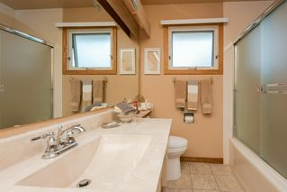 Photo 24: 9136 177 Street in Edmonton: Zone 20 House for sale : MLS®# E4168275