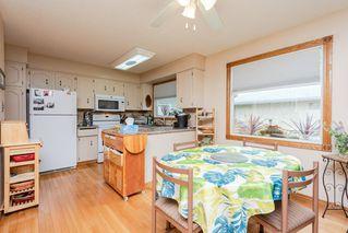 Photo 7: 9136 177 Street in Edmonton: Zone 20 House for sale : MLS®# E4168275