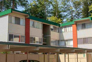 """Photo 16: 867 WESTVIEW Crescent in North Vancouver: Upper Lonsdale Condo for sale in """"CYPRESS GARDENS"""" : MLS®# R2395425"""