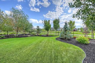 Photo 44: 15 CIMARRON ESTATES Gate: Okotoks Detached for sale : MLS®# A1028995