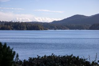 Photo 53: 629 Senanus Dr in : CS Inlet House for sale (Central Saanich)  : MLS®# 857166