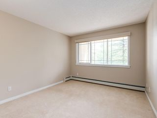 Photo 20: 209 9449 19 Street SW in Calgary: Palliser Apartment for sale : MLS®# A1057053