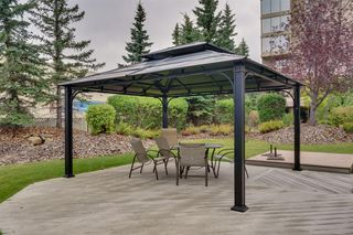 Photo 31: 202 4555 Varsity Lane NW in Calgary: Varsity Apartment for sale : MLS®# A1058728