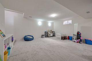 Photo 36: 2715 117 Street in Edmonton: Zone 16 House for sale : MLS®# E4203567