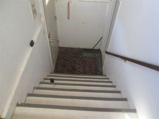 Photo 8: 11945 69 Street in Edmonton: Zone 06 House for sale : MLS®# E4183147