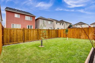 Photo 22: 292 WINDROW Crescent SW: Airdrie Detached for sale : MLS®# C4305724