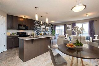 Photo 5: 6723 24 Avenue in Edmonton: Zone 53 House Half Duplex for sale : MLS®# E4200536