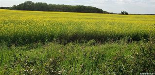 Photo 6: RM OF EDENWOLD in Edenwold: Lot/Land for sale (Edenwold Rm No. 158)  : MLS®# SK818922