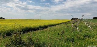 Photo 4: RM OF EDENWOLD in Edenwold: Lot/Land for sale (Edenwold Rm No. 158)  : MLS®# SK818922