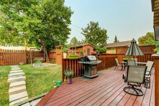 Photo 45: 1303 NORFOLK Drive NW in Calgary: North Haven Upper Detached for sale : MLS®# A1037849