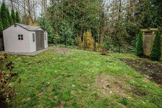 "Photo 39: 24630 101 Avenue in Maple Ridge: Albion House for sale in ""JACKSON RIDGE"" : MLS®# R2518222"