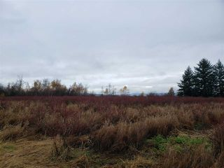 Photo 17: 17915 FORD ROAD DETOUR in Pitt Meadows: West Meadows House for sale : MLS®# R2519795