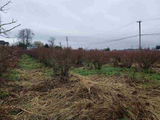 Photo 15: 17915 FORD ROAD DETOUR in Pitt Meadows: West Meadows House for sale : MLS®# R2519795