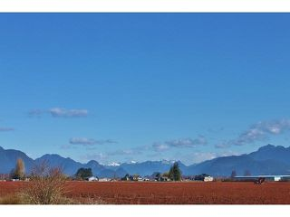 Photo 1: 17915 FORD ROAD DETOUR in Pitt Meadows: West Meadows House for sale : MLS®# R2519795