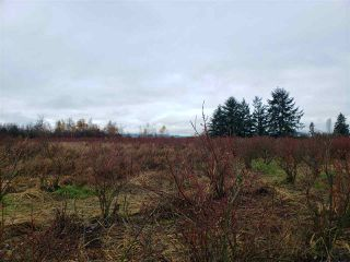 Photo 13: 17915 FORD ROAD DETOUR in Pitt Meadows: West Meadows House for sale : MLS®# R2519795