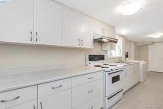 Photo 26: 3630 Kathleen Street in VICTORIA: SE Maplewood Single Family Detached for sale (Saanich East)  : MLS®# 417669