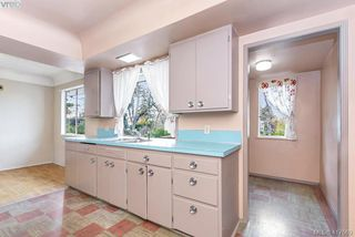 Photo 31: 3630 Kathleen St in VICTORIA: SE Maplewood Single Family Detached for sale (Saanich East)  : MLS®# 828620