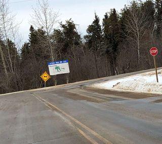 Photo 10: 206 ERICKSON Drive: Rural Sturgeon County Rural Land/Vacant Lot for sale : MLS®# E4188762