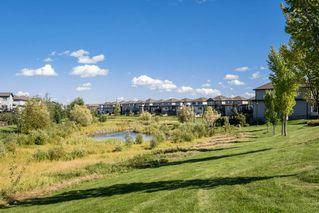Photo 47: 1189 HAYS Drive in Edmonton: Zone 58 House for sale : MLS®# E4213069
