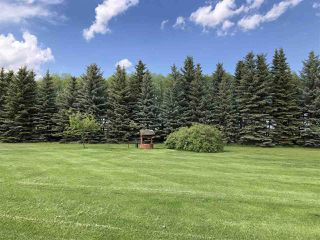 Photo 4: 59118 RGE RD 260: Rural Westlock County House for sale : MLS®# E4190750