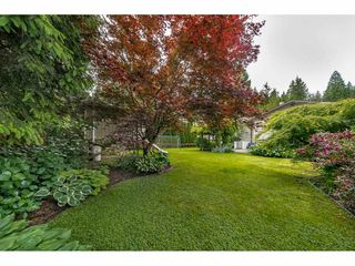 Photo 38: 178 COLLEGE PARK Way in Port Moody: College Park PM House for sale : MLS®# R2464383