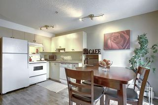 Photo 22: 3203 1620 70 Street SE in Calgary: Applewood Park Apartment for sale : MLS®# A1015666