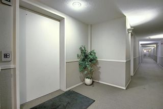 Photo 2: 3203 1620 70 Street SE in Calgary: Applewood Park Apartment for sale : MLS®# A1015666