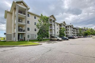 Photo 27: 3203 1620 70 Street SE in Calgary: Applewood Park Apartment for sale : MLS®# A1015666