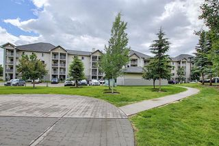 Photo 29: 3203 1620 70 Street SE in Calgary: Applewood Park Apartment for sale : MLS®# A1015666